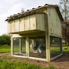 Space-Saving Chicken Coop