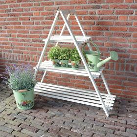 Plant Ladder - Folklore