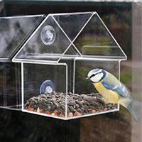 Window Mount Bird Feeder