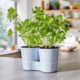 Hydro Herb Twin Pots